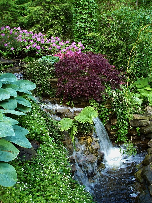 Outdoor woodland water feature