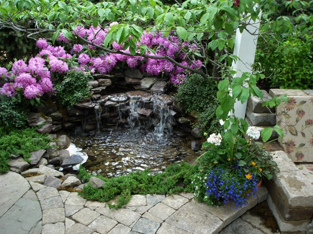 Woodland water feature with waterfall