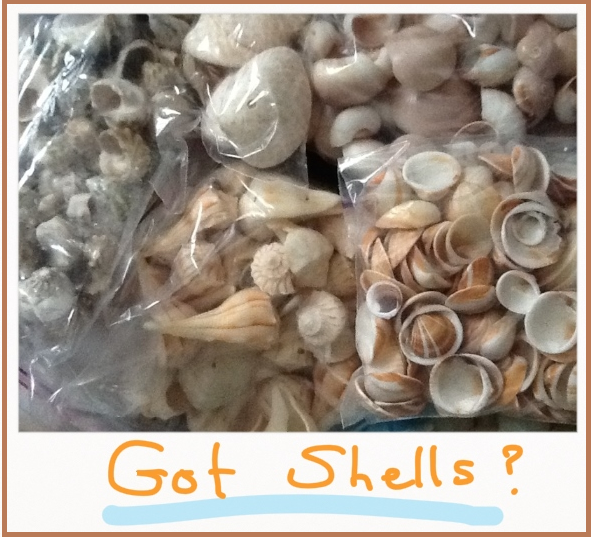 Got shells