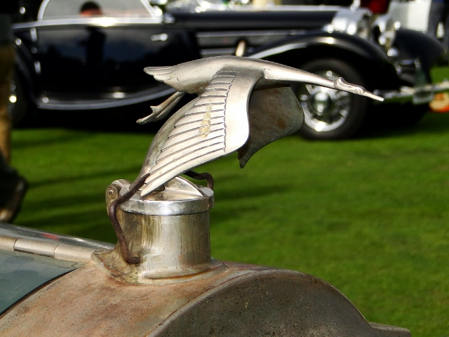 Unrestored Packard Bird hood ornament (640x480)