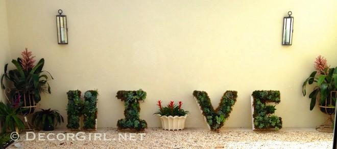 HIVE garden