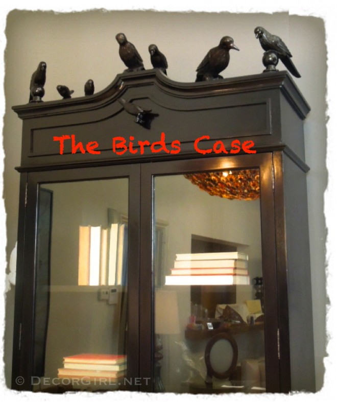 Birds on a Bookcase