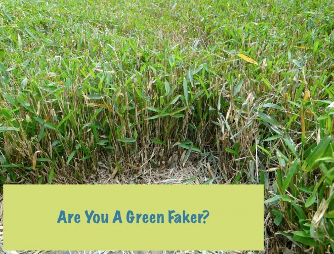 Are you a green faker?