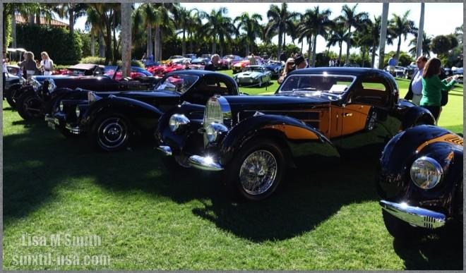 Bugattis on the lawn