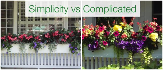 Simple planting vs complicated windowboxes